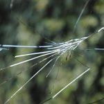 フロントガラスのヒビを修理する方法!自分で簡単、綺麗に直すには?